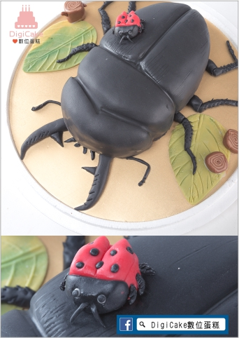點此進入鍬型蟲造型蛋糕的詳細資料!
